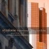 2012 Synfonie Transversale